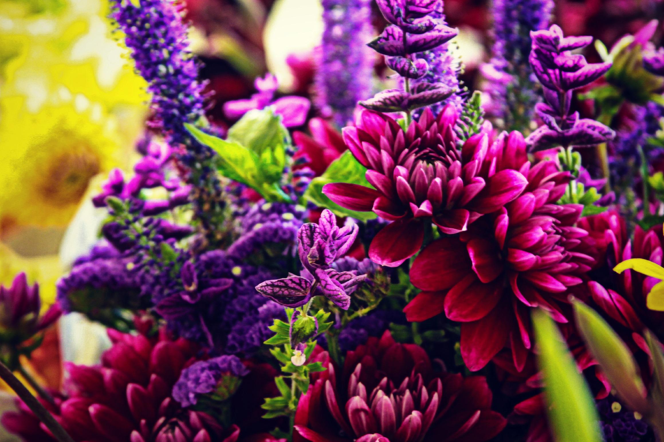 Vibrant Colors | Kolby Skidmore